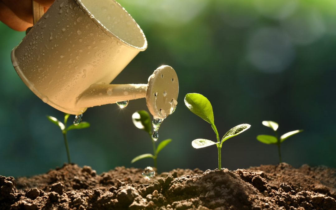 The benefits email delivers to grow your business