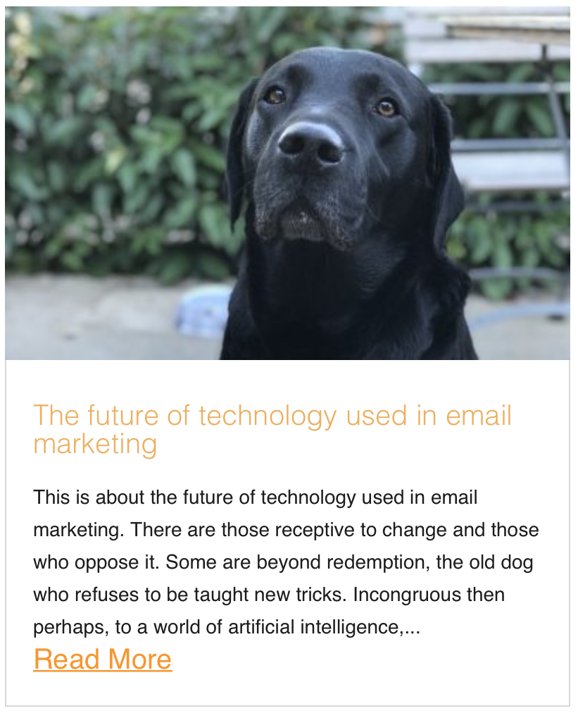 The future of technology used in email marketing