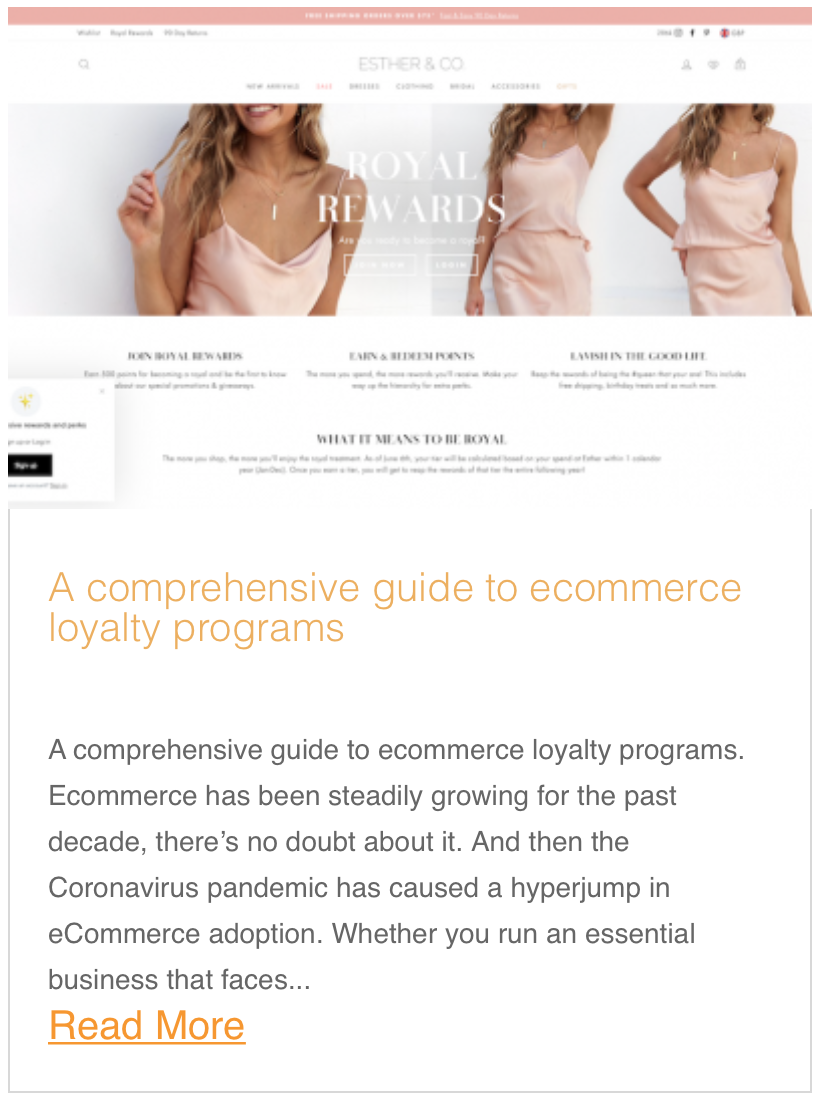 A comprehensive guide to ecommerce loyalty programs